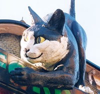 The Catford Cat
